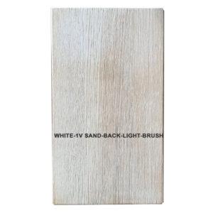 WHITE-1V-SAND-BACK-LIGHT-BRUSH